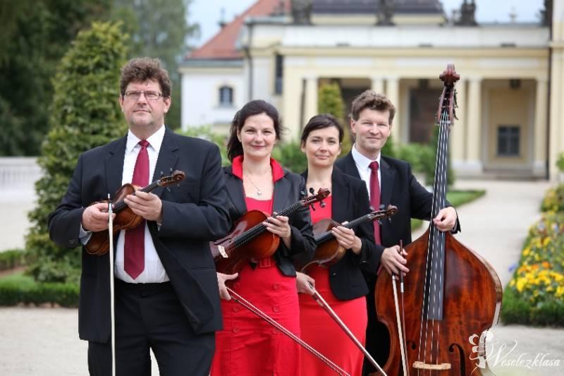 Kwartet smyczkowy ANDANTE, Białystok - zdjęcie 1