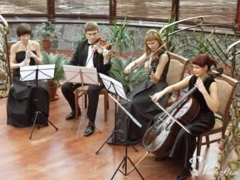 Con Brio Zespół Kameralny, Oprawa muzyczna ślubu Miłomłyn