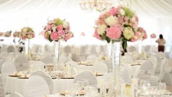 Bluebird - organizacja wesel , Wedding planner Drohiczyn