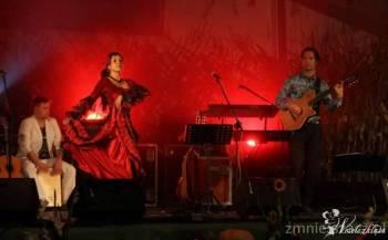 Koncert Gipsy Kings cover bandu + taniec flamenco , Artysta Strumień