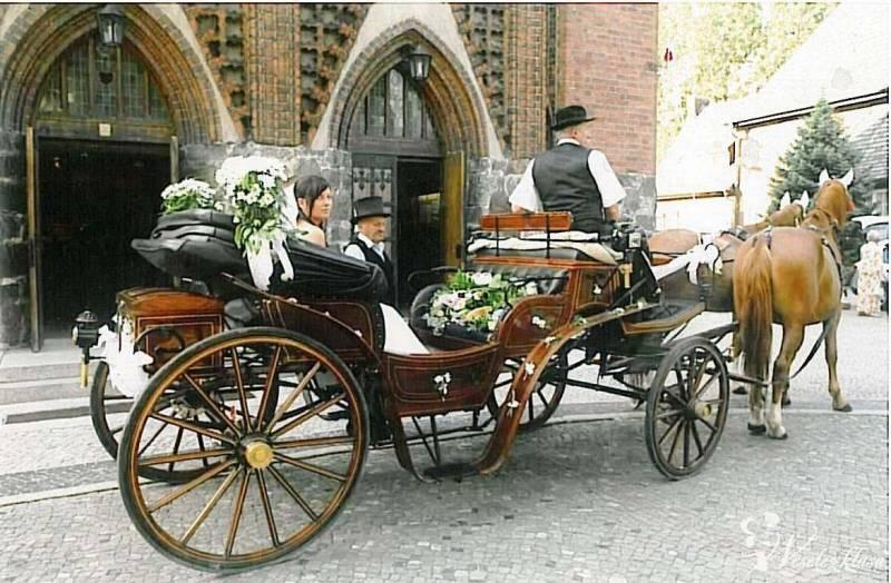 Bryczka do ślubu, Palędzie - zdjęcie 1
