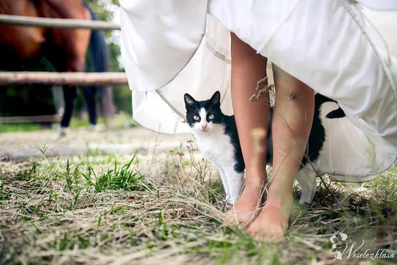 FUNKY WEDDINGS - Sandra Rabczewska Fotografia, Bydgoszcz - zdjęcie 1