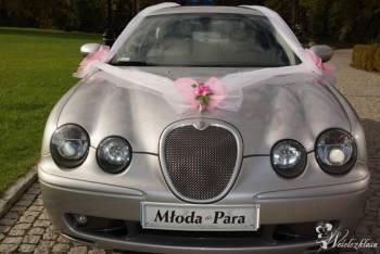 JAGUAR DO ŚLUBU - STYL, PRESTIŻ, ELEGANCJA, Samochód, auto do ślubu, limuzyna Lubomierz