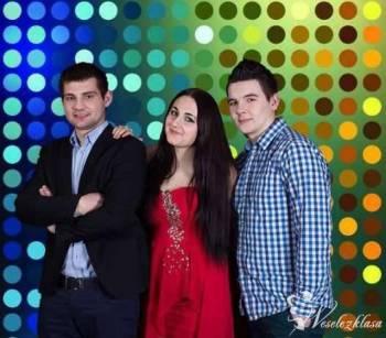 Zespół Muzyczny Muzyczna Perła, Zespoły weselne Wojkowice