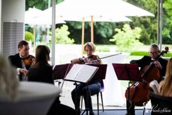 Kwartet smyczkowy - klasyka i pop na Twoim ślubie, Oprawa muzyczna ślubu Mogielnica