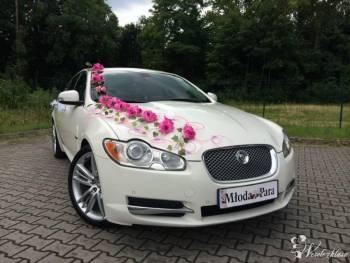 Jaguar XF *Biała* Perła, Samochód, auto do ślubu, limuzyna Siemianowice Śląskie