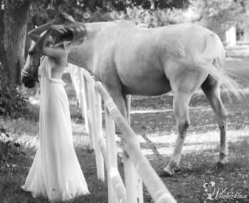 Zamów wyjątkową  sesję ślubną  !!, Fotograf ślubny, fotografia ślubna Skierniewice