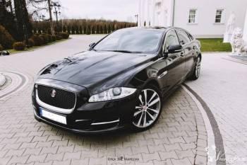 Jaguar XJ Long auto do ślubu, Samochód, auto do ślubu, limuzyna Glinojeck