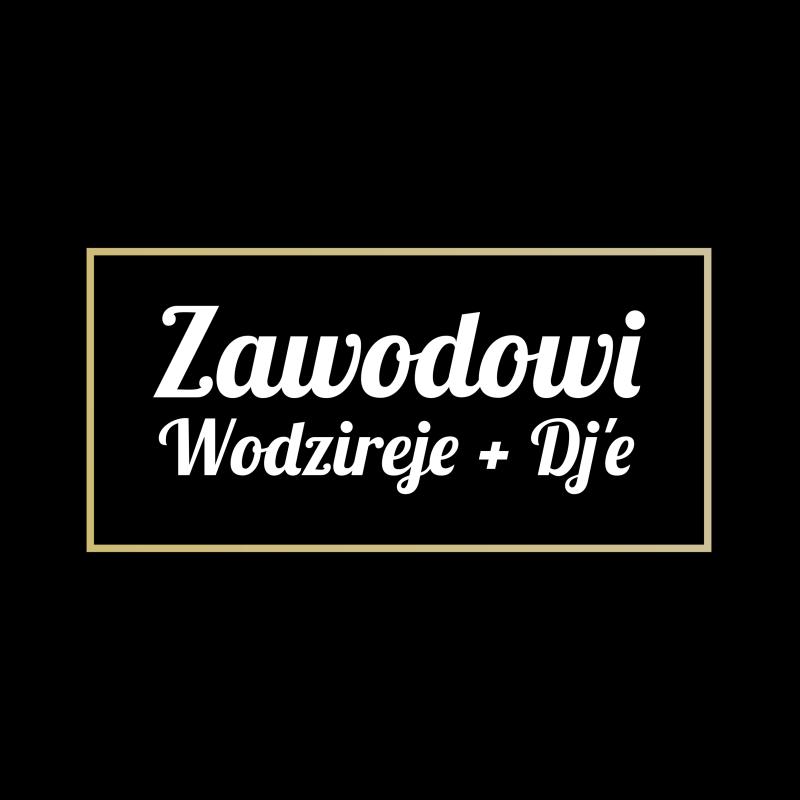 Zawodowi Wodzireje + DJ'e