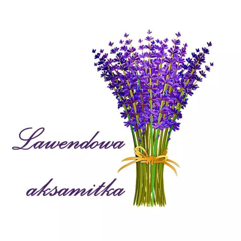 Lawendowa aksamitka