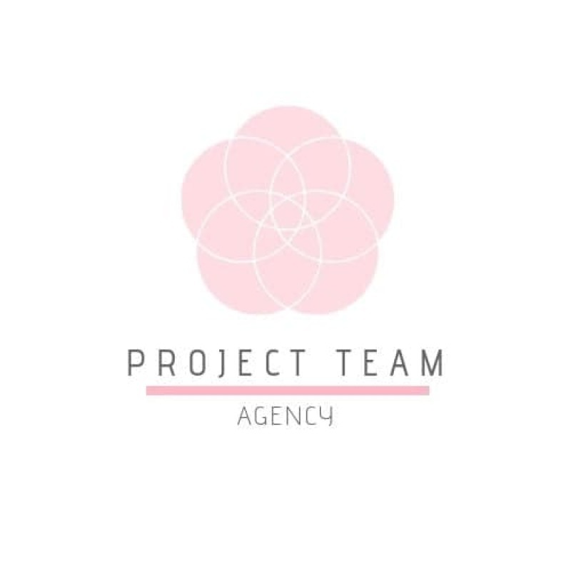 Project Team Agency