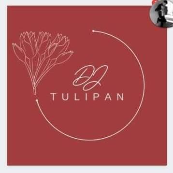 Dj Tulipan
