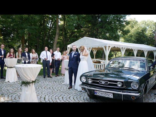 Pap-Art Wedding Photography + Video - film 1