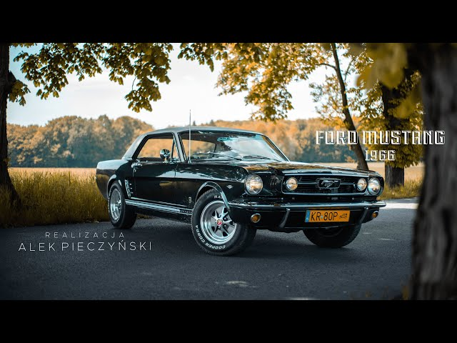 1966 Ford Mustang GT 289 V8 225KM Ivy Green Metallic, auto do ślubu! - film 1