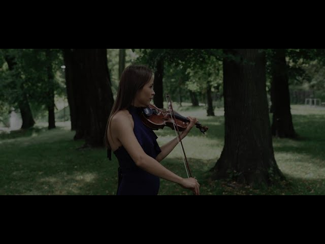 Stara Szwajcaria - sala bankietowa - film 1