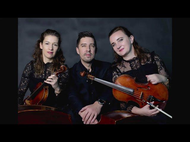 VISION TRIO -trio smyczkowe - film 1