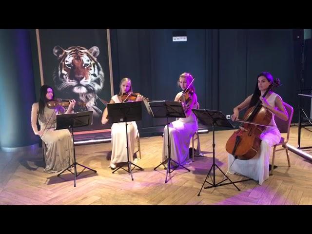 Kwartet smyczkowy na Twoim ślubie i weselu! Elegancka oprawa muzyczna - film 1