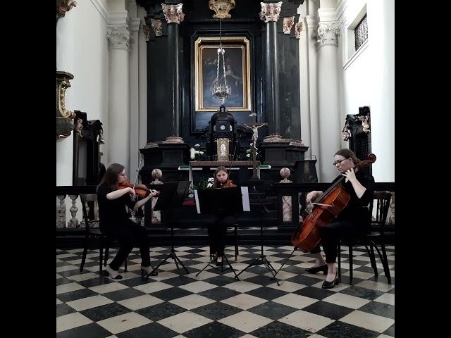 Trio smyczkowe Iris Trio - film 1