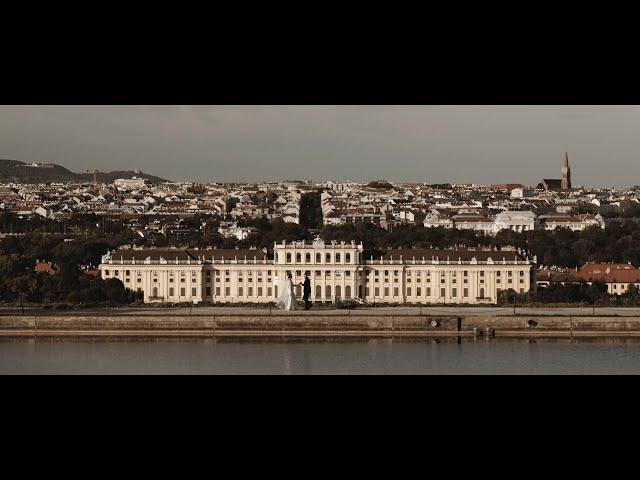 DayDreamStory - Oryginalny Film i Fotografia - film 1