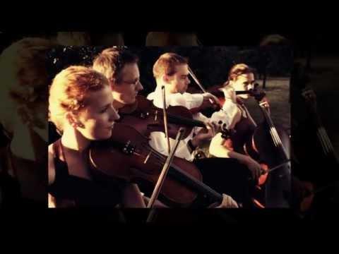 Muzyka na ślub,kwartet smyczkowy, skrzypce, harfa, wokalistka - film 1