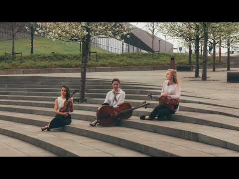 Profesjolana oprawa muzyczna ślubu - Fresco Trio - film 1