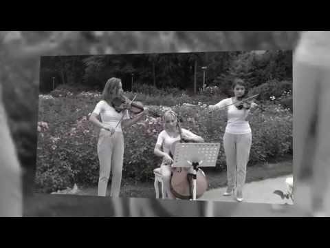 Oprawa muzyczna WOMEN STRING TRIO - film 1