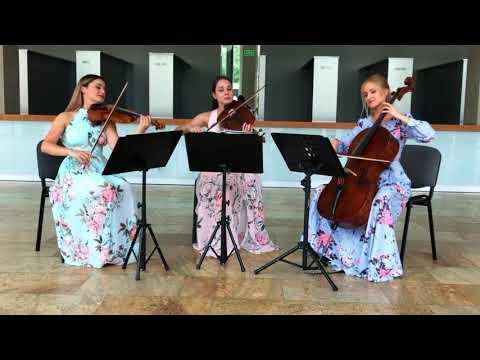 4te Quartet - profesjonalna oprawa muzyczna ślubu. - film 1